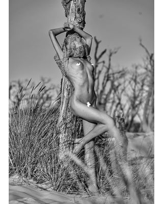 portraitphotography freethenipple photographer slovakphotographer beach nudeart czechrepublic ukrainiangirl noretouchneeded photography dunes summerlove summerfun