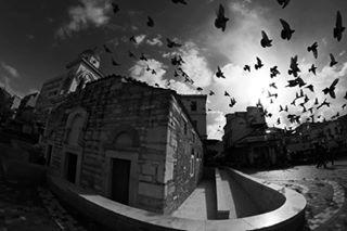 black exploringtheglobe freesouls keepitweird👽freshandclassy💫 magic✨ mewe🔥💖 ©mg monastiraki nature pure skylover wildlife