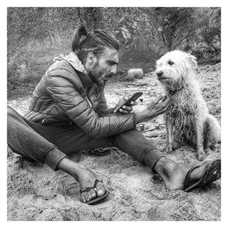 beach baleal peniche dog fourleggedfriend