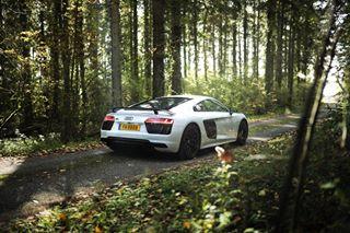 audi audir8 audir8v10plus r8 r8v10plus supercars woods