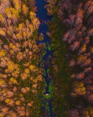 autumn autumncolors autumnvibes dronephotography fall nature