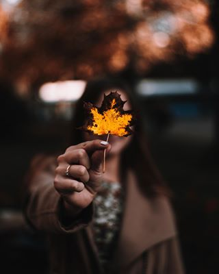 herbst peoplephotography visualambassador natur autumn artofvisuals leaf nature art photography fall artofvisual leaves