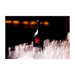 art bodegon crianza españa loveandwine photographer redwine spanishwine termanthia tinto toro vino wine wineglass