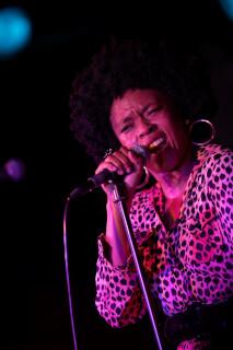 Portfolio Concert Photography photo: 2