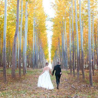 poplars brideandgroom portlandweddingphotographer fineartwedding fallcolor portlandphotographer