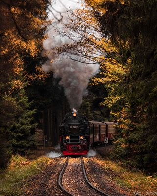 folkscenery moodynature hogwartsexpress moody_tones folkgood wonderful_europe coloursofautumn autumnlandscape bucketshot trainsofinstagram draussenimharz the_folknature outdoortones epicfall harzmountains wekeepmoments mg5k brockenbahn hikingbangers wernigerode autumnvibes🍁 deutschlandkarte travel_2_germany steamtrains visitgermany weroamgermany escapeandwonder moodygrams exploreharz germanroamers