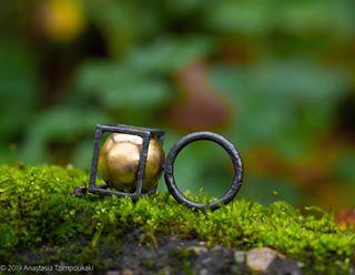 zurich gigimariani olympus photoapetite contemporaryjewellery gigimarianigioielli swiss adore nature olympuslenses