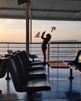 somewheremagazine seagull photography natgeo wanderer greecestagram sea sunset sky boat blue greekislands travel pastafloramag nofilter travelgram thewaybackhome photooftheday wanderlust