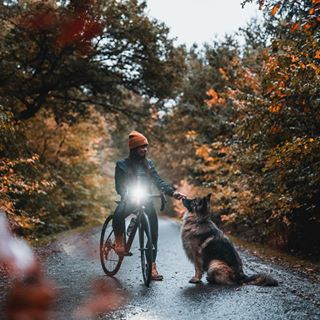thevisualmag eclectric_shotz folkscenery way2ill wanderlust roadcycling aov10k visualsofearth autumnvibes stravacycling moodypictures samoens deptofearth lumixs1 eclectic_shotz depthofearth goretex fromwhereiride canyon landscapephoto landscapephotography changeyourscenery forestlife