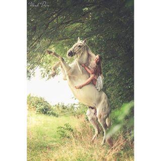 poho_post pferdeshooting foal horsephotography horsephotographer pony horse paardenfotograaf horses europaspferde pferde horsephoto featuremesophie equinephotographer bestofequines instahorse europeanhorse boewtds_unique bestofequinephotography lsr_feature canon equinephotography horsesofinstagram paardenfotografie hoofprintfeatures cheval equine paard horseshooting beautifulhorse