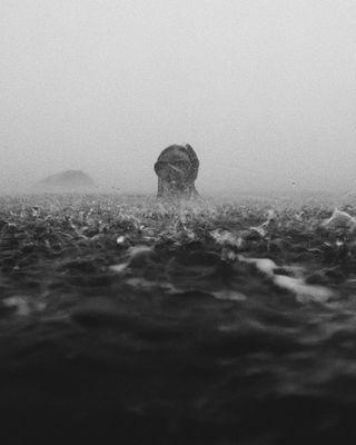 aesthetic blackandwhite cinematic concretewaveco espritmag exploreobserveshare fadedaesthetics fog kaktuswithus mallorca modeling moodygrams nuagesmagazine of2humans oncorage portrafeed portrait portraitphotography rain roamtheplanet sea solarcollective stademagazine themoderndayexplorer theoctobermagazine thislifemagazine water wolrdviewmag woman