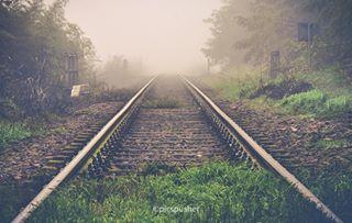 autumn autumn🍁 autumnal autumnvibes autumnvibes🍁 binari fog foggyday foto fotografia fotos gropellocairoli lomellina nebbia opacity pavia photo photography photos railroad railway