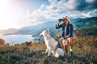 hiking wolf husky adventure