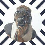 Avatar image of Photographer Naya Steevens