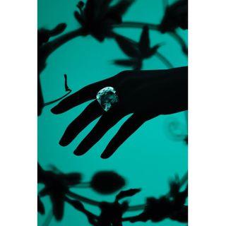 swarovski blingbling jewelery jeweleryphotography stilllifephotography stilllife productphotography newwonders newlust newpassion newproject newwork