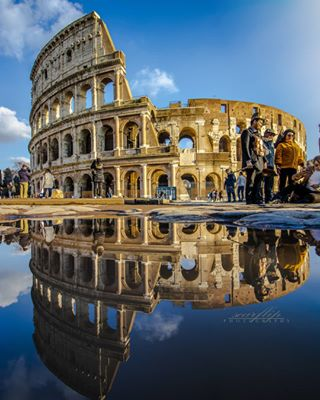 animals portuguese topcanonpt canonstories canon photography instamoment visionofpictures canonworld italy fotografia photographer stories worldphoto travelphotography rome portugal theworldshotz photographylover landscapes coloseo streetphotography traveller mirror reflection people nature canon80d