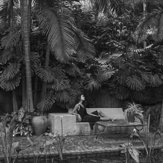 betenerife details dreamplace garden hiddenplaces islandlife magicalplaces mood oceansdesire oceansdesirephotography she tenerife tropical