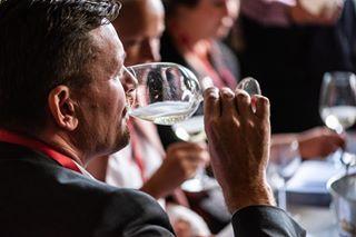 winelover champagne visittartu bubbly sommelier winetasting wine