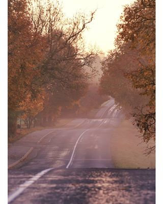 labanoras sunrise kelias goldenhour auksinevalanda labasryas dreamworld lietuva earlymorning gyvasmiskas myliumiska