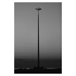 theprintswap fineartphotography electricity architecture invironment blackandwhite highvoltage lightson landscape