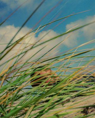 Portfolio Nature photo: 1