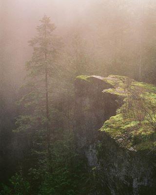 Portfolio Nature photo: 0