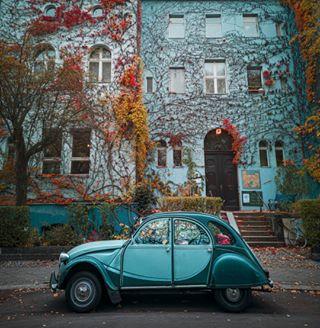 meinedeutschlandliebe topberlinphoto bestberlinphoto rawcommunity autumnmood autumncolours batpixs_germany ig_deutschland srs_nature ig_berlin srs_germany loves_united_berlin autumn huaweimobilede shots_r_stars huawei herbstinberlin officialfanofberlin herbst berlin weloveberlin visit_berlin srs_berlin srs_berlin_dasoriginal schoenemorgenwalk