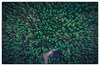 air arctic artofimagination cabin dji djiphantom4pro drone dronephotography eclectic_shotz finland finland100 forest fromabove landscape landscapephotography lapland luosto nordic north phantom picoftheday pyhä suomi100 travelphotography visitfinland woods